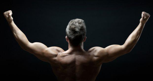 Una CORRECTA ingesta de aminoácidos es de gran ayuda para disminuír la fatiga y aumentar las ganancias musculares.