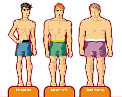 tipos de morfologia