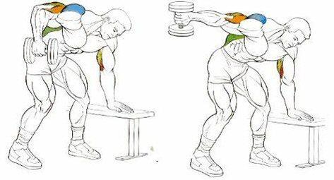 Triceps braquial ejercicios